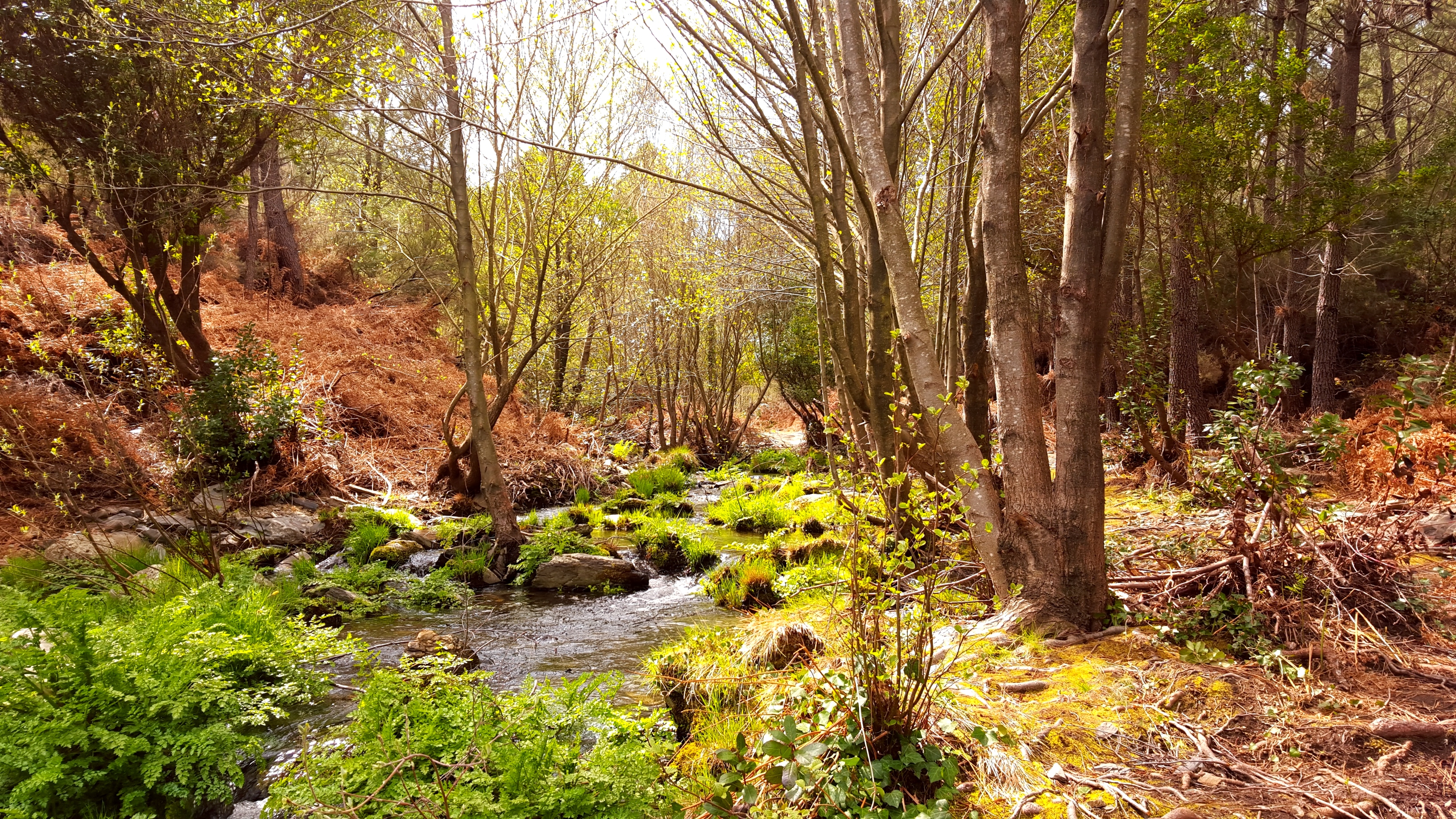 paisajes casa rural en Extremadura Cáceres alquiler
